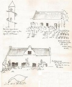 Sketches made whilst visiting Roggeland and Fairview in the wine region around Stellenbosch in the Cape