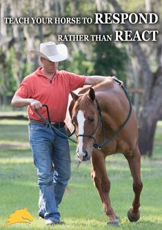 """Teach your horse to respond rather than react."" - Pat Parelli"