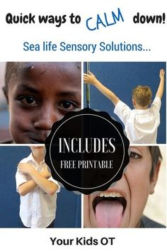 Quick ways to calm down! Sea life Sensory Solutions! Includes a free printable at Your Kids OT