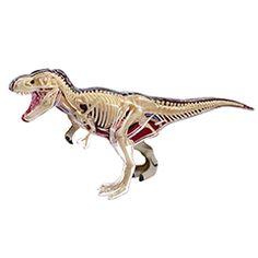 4D Vision T Rex