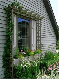 windows-box and pergola. THIS will be on my house!! I'm in love here! :) #PergolasTrellis