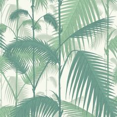 Papier peint Palm Jungle de Cole & Son Vert sur fond Blanc