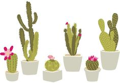 Free Vector Art at Vecteezy. Hand Drawn Potted Cactus