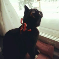 My little baby on Christmas waiting for Santa to come