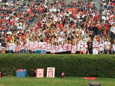 Fyffe cheering section