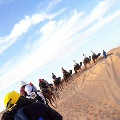 Welcome to #visitmorocco & have one of our camel trekking! Best experience guaranteed & Adventure is Worthwhile! www.travel-visit-morocco.com #visitsahara #adventureworthy #trek #trekking #cameltrekking #camelride #adventuretour #adventure #explorer #experience #grouptours #privatetrip #luxury #standard Sahara desert tours from any city of Morocco #marrakech #fez #tangier #casablanca #agadir #essaouira #ouarzazate #rabat #trip #moroccotrips #moroccotours #fun