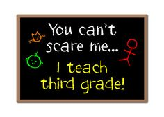 You Can't Scare Me I Teach Third Grade Fridge Magnet