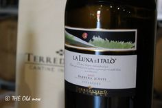 Discover our Barbera La Luna e i Falò at our winery in Barolo - Langhe - Piedmont - Italy