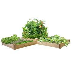 12 ft x 4 ft Cedar Raised Garden