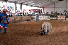 Mutton Bustin  #PictureYourselfInTexas