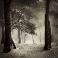"forevernoon: "" Snow in Porec // Photo by Karmen Orlić // """