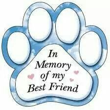 5 inch In Memory of my best friend Paw Print Magnet Miss My Best Friend, Best Friends, Dog Love, Puppy Love, Miss My Dog, Pet Loss Grief, Pet Remembrance, Printed Magnets, Dog Memorial
