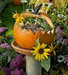 Bird feeder from a pumpkin