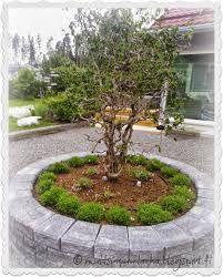 Peikonpähkinä Outdoor Decor, Sidewalk, Garden, Green, Outdoor, Stone, Potager Garden, Plants, Backyard
