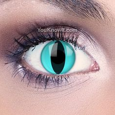 Aqua Cat Contact Lenses...but for me they will be my alien eyes ^_^