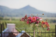 Mediterrán terasz egy magyar szőlőbirtokon -