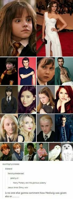 The Harry Potter cast then and now!
