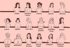 Les différentes formes de poitrine - Pomm'Poire