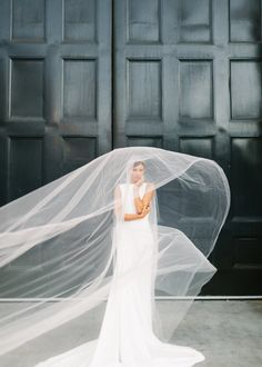veil blowing in wind pronovias gown | Photography: Larissa Cleveland Photography