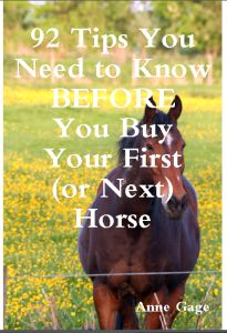 92 Tips You Need to Know BEFORE You Buy Your First (or Next) Horse