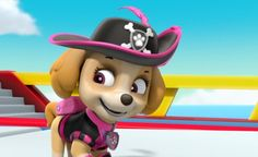 Sea Patrol: Pirate Pups to the Rescue/Gallery Los Paw Patrol, Baby Animals Super Cute, Marshall, Disney Dogs, Cocker Spaniel, Rescue Dogs, Pirates, Pup, Cloverfield 2