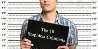 The 10 Stupidest Criminals - pretty funny stuff. Read the full article here:    http://www.brownsafe.com/blog/the-10-stupidest-criminals/
