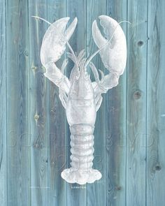 Nautical Art Print  Blue and White Lobster print by ScarletBlvd, $20.00