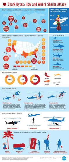 How and Where Sharks Attack - Surfers and swimmers are the most likely to be attacked by sharks. Sharks will most probably attack lower legs, upper legs or lower torso. Sharks have various attack strategies like hit-and-run, bump and bite, and sneak attacks. Enjoy the scary shark attack facts in the infographic! #shark #sharkattack #endangeredspecies