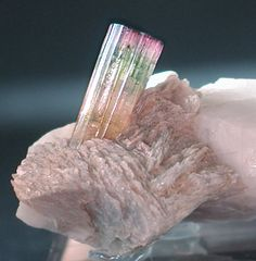 """This Tourmaline is called IRIS because of the incredible quantity of colors in the same crystal. It stands in a Lepidolite """"flower"""" with a big Orthoclase attached / San Piero in Campo, Elba Island, Tuscany, Italy... WOWx3!!!"""