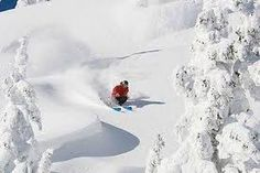 http://www.alps2alps.com/EN/about-cheap-airport-ski-transfers.html  We cover all alpine destinations in France, Italy and Switzerland.