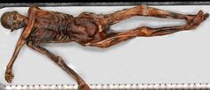 Otzi, the Iceman: A Stone Age warrior frozen in an icy tomb for years can now be viewed in astonishing detail thanks to a new website. The Iceman, 6th Grade Social Studies, Go Online, Back Tattoos, Stick It Out, S Tattoo, Ancient Civilizations, Archaeology, Cool Photos