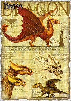 Brass Dragon by Richard Sardinha                                                                                                                                                     Plus