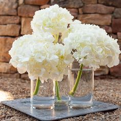Hydrangeas are a stunning addition to any event; this bundle includes 12 stems of hydrangea, and 1 set of 12  cylinder pillar vases in the size of your choice, with the option of adding floating candles to complete the look. Hydrangea are a sophisticated, elegant choice for weddings, christenings, or celebrations' of life. Submerge the hydrangea and use floating candles to create ambient lighting at each table.