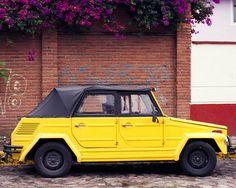 This Yellow Thing Car Photography was taken in a neighbourhood in Mexico City- by Lost Kat Photo lostkat.com