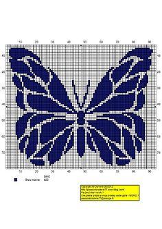 Beau-bleu.jpg Butterfly