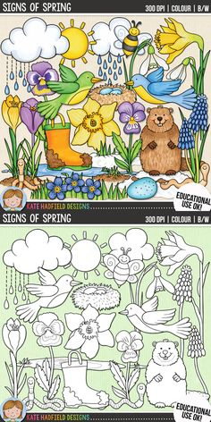 Cute spring clip art for teachers | contains coloured clipart and black and white outline versions | Kate Hadfield Designs at Teachers Pay Teachers