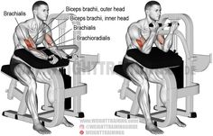 The machine preacher curl is an isolation exercise that targets your brachialis, while your biceps brachii and brachioradialis act as synergists. Weight Training Programs, Weight Training Workouts, Training Exercises, Training Videos, Free Training, Monday Workout, Gym Workout Tips, Workout Fitness, Yoga Fitness
