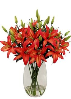 Gauteng Central Flower & Gift Delivery for all occasions. Get Well Soon Flowers, Lilies, Glass Vase, Silk, Plants, Gifts, Irises, Presents, Orchids