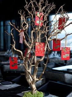 """Restaurant's stylish dining room will feature a traditional Chinese New Year """"wishing tree,"""" from which each party will select a red en. Chinese Theme Parties, Chinese New Year Party, Chinese New Year Decorations, Chinese New Year Crafts, New Years Decorations, New Years Party, Chinese Holidays, Table Decorations, Chinese Celebrations"""