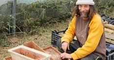 Tomates bio, sans pesticide et sans eau : le secret de Pascal Poot - cakerecipespins. Pascal Poot, Organic Gardening, Gardening Tips, Beginners Gardening, Gardening Services, Gardening Gloves, Potager Bio, Compost, Green Nature