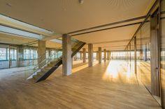Tabakfabrik Linz: Verbunden sind die beiden Stockwerke im Netural Büro durch diese Stiege. Ecommerce, Stairs, Home Decor, Linz, Ladders, Homemade Home Decor, Stairway, Staircases, E Commerce