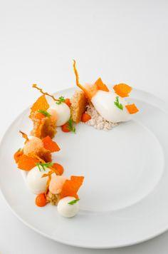 Jakub Hartlieb / Carrot Cake