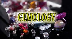 Bring the many important changes in your life with gemology and the best Indian astrologer in Melbourne. Most Expensive Stone, Expensive Stones, Melbourne Victoria, Your Life, Astrology, Bring It On, Indian, Top, Indian People