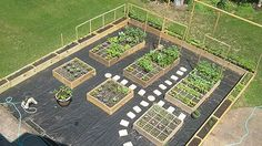 Vegetable Garden Layout Plans - I like the border. And the black plastic under gravel for no weeds
