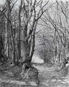 The old road by Sarah Woolfenden.
