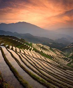 Dragons Backbone Rice Terraces China | Dragon's Backbone Rice Terraces, China. 16,000 acres- 400 years ...