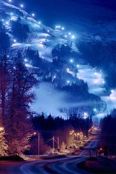 Alyeska Resort in Girdwood, Alaska Where's my wallet? This Christmas I'm taking a flight to Alaska! Places Around The World, The Places Youll Go, Places To See, Around The Worlds, Dream Vacations, Vacation Spots, Girdwood Alaska, Anchorage Alaska, Beautiful World