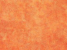 Andover Fabrics - Gail Kessler 'Dimples' Bildgröße 20 cm x 15 cm dim-006-04-O1 https://planet-patchwork.de/de/article/qp/29127/0/