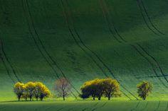 Seeking Light Moravian evening landscape, south Moravia, Czech Repuplic, Europe