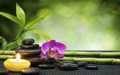 Come tenere casa in modo zen